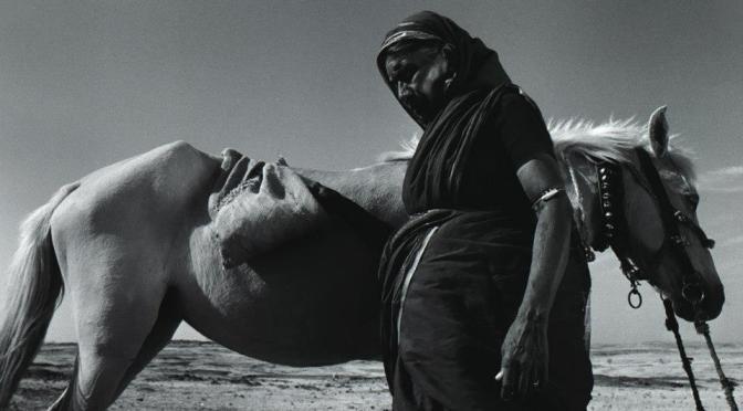 KAMAKSHI (Satinder Singh Bedi) Shorts