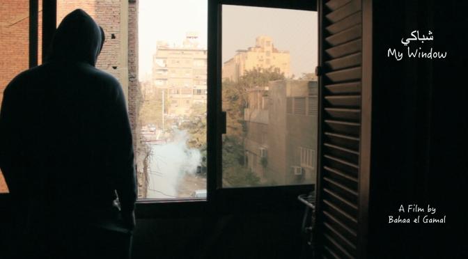 My Window (Bahaa El Gamal) Egypt. Imagineindia 2018