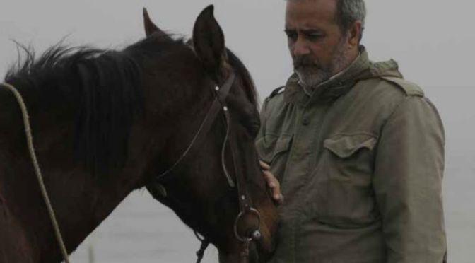 Charcoal (Esmaeel Monsef) Iran. OffIcial Section
